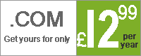 .com domains at low prices